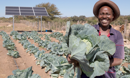 Enhancing food security through solar-powered irrigation in Matabeleland