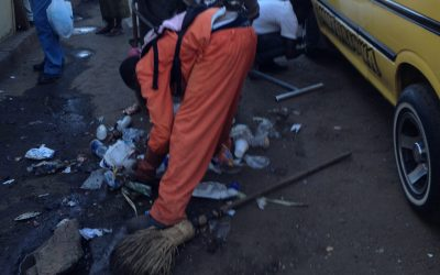 Zimbo Green January clean up
